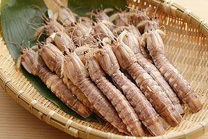 『おかべ水産』朝茹でボイルシャコ(冷凍便) の説明画像